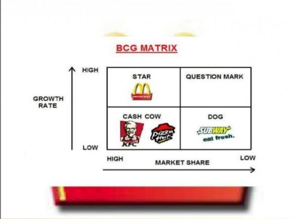exemplo matriz bcg