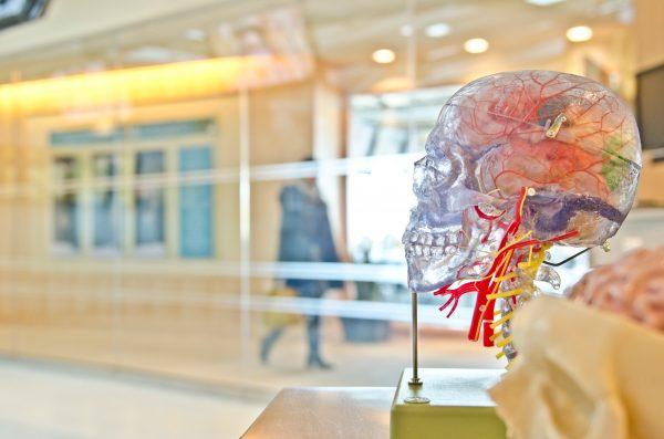 Não basta só saber vender, é preciso entender a psiquê do ser humano